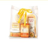 Fall grab bag   burt s bees