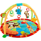 Meijer bright stars safari tales activity gym