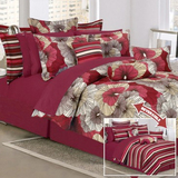 Ray floral plum 16 piece comforter set