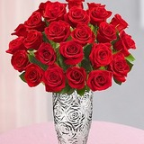 Florists 2 dozen red roses 11 25 15